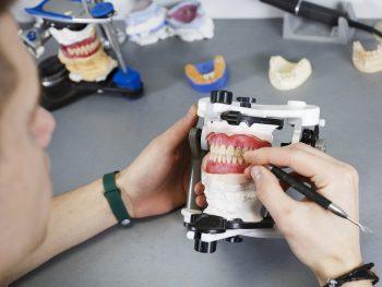 dental technician creates prosthetics aesthetics and creates a natural gum